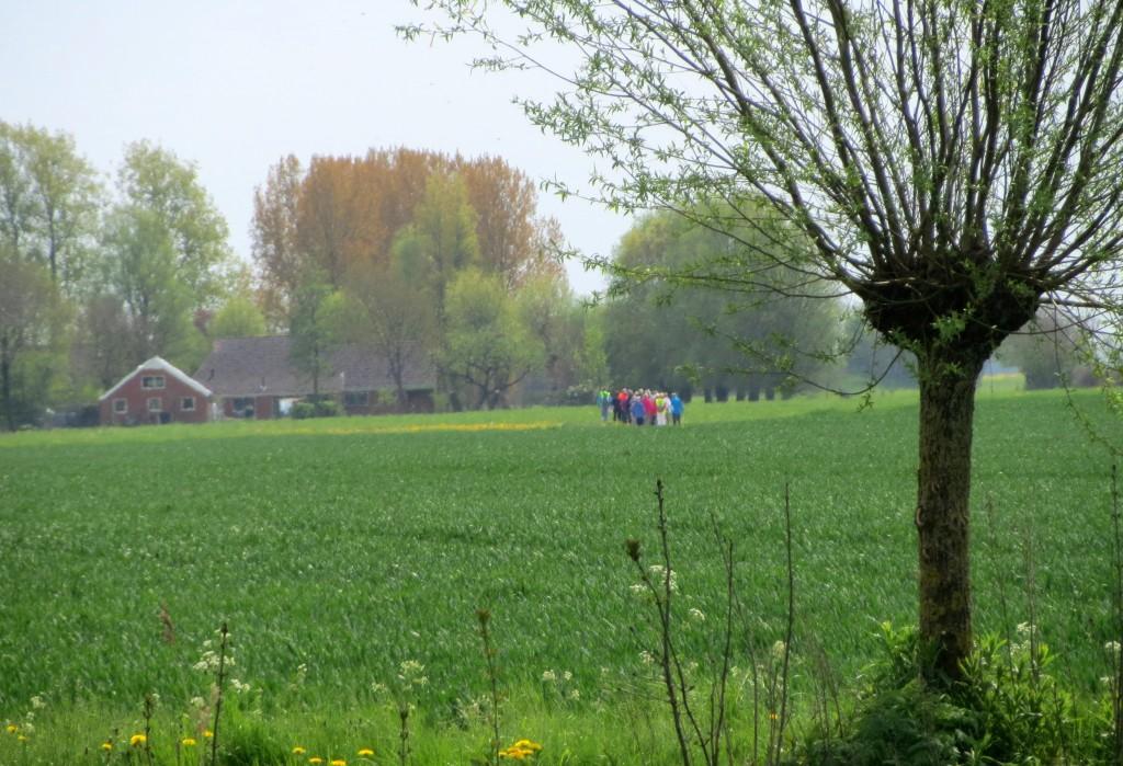 Een groepje mensen bewandelt de Woldweg
