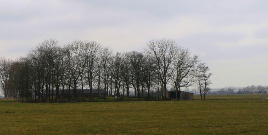 De begraafplaats in de verte